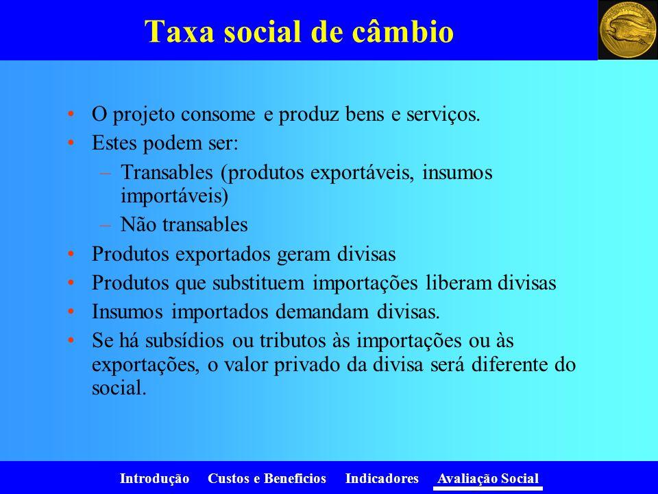 Taxa social de câmbio O projeto consome e produz bens e serviços.