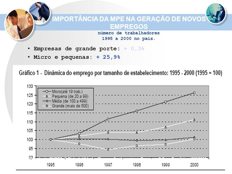 IMPORTÂNCIA DA MPE NA GERAÇÃO DE NOVOS EMPREGOS