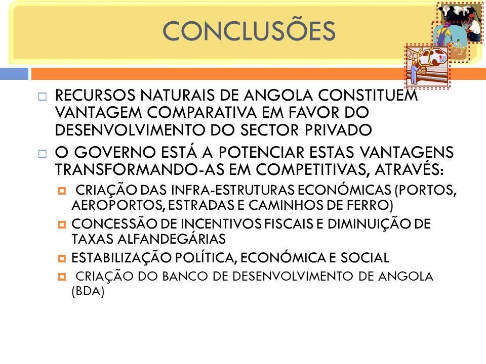 CONCLUSÕES RECURSOS NATURAIS DE ANGOLA CONSTITUEM VANTAGEM COMPARATIVA EM FAVOR DO DESENVOLVIMENTO DO SECTOR PRIVADO.