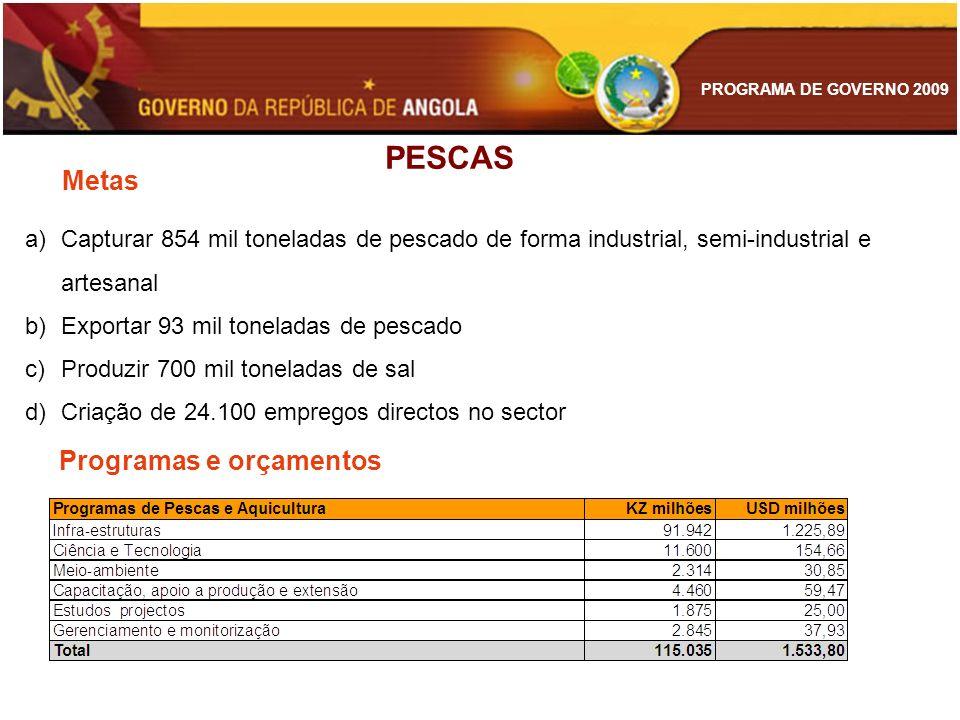 PESCAS Metas Programas e orçamentos