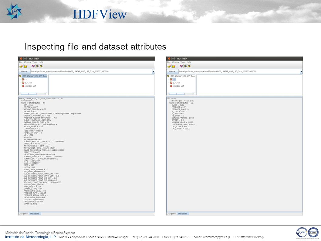 HDFView Inspecting file and dataset attributes