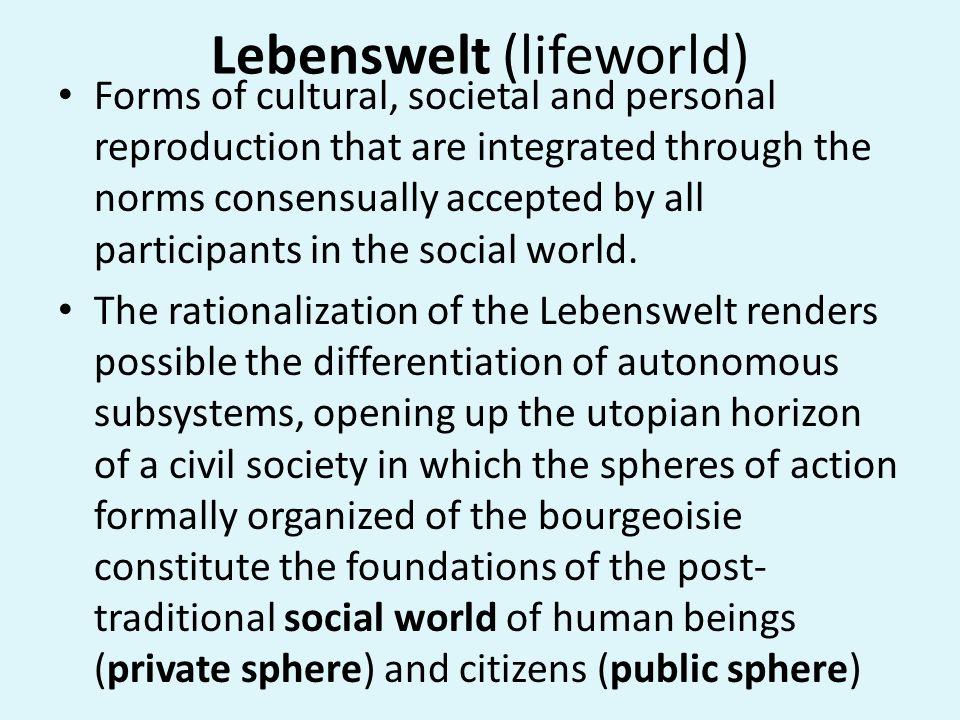 Lebenswelt (lifeworld)