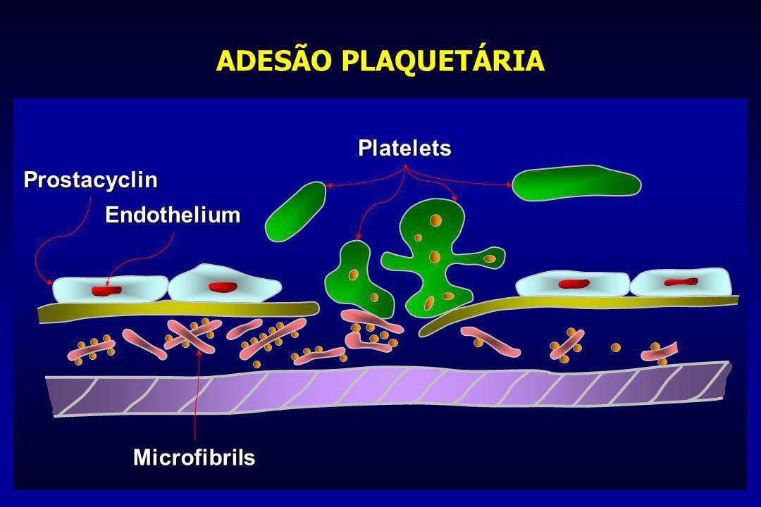 ADESÃO PLAQUETÁRIA Platelets Prostacyclin Endothelium Microfibrils
