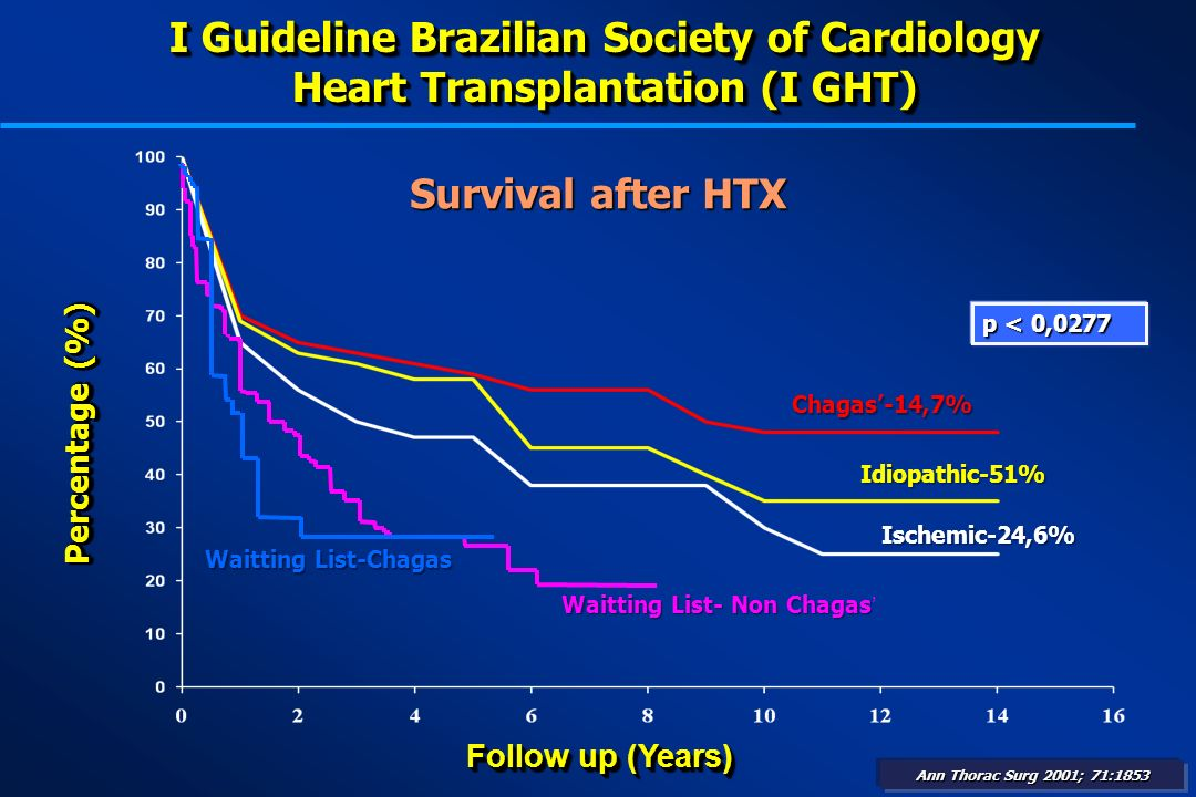 I Guideline Brazilian Society of Cardiology