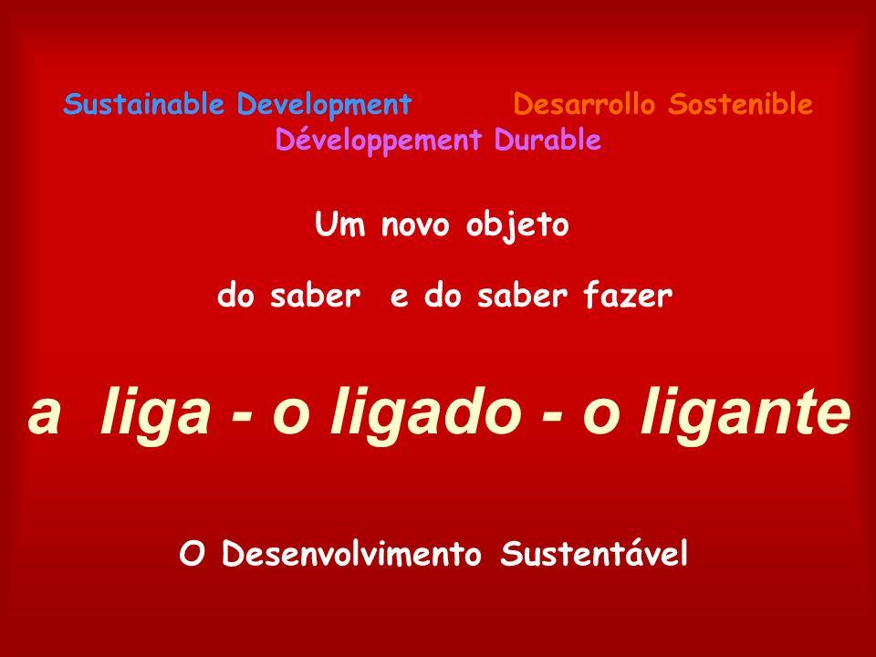 a liga - o ligado - o ligante O Desenvolvimento Sustentável