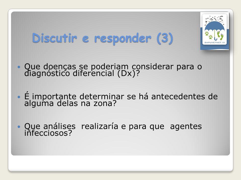 Discutir e responder (3)