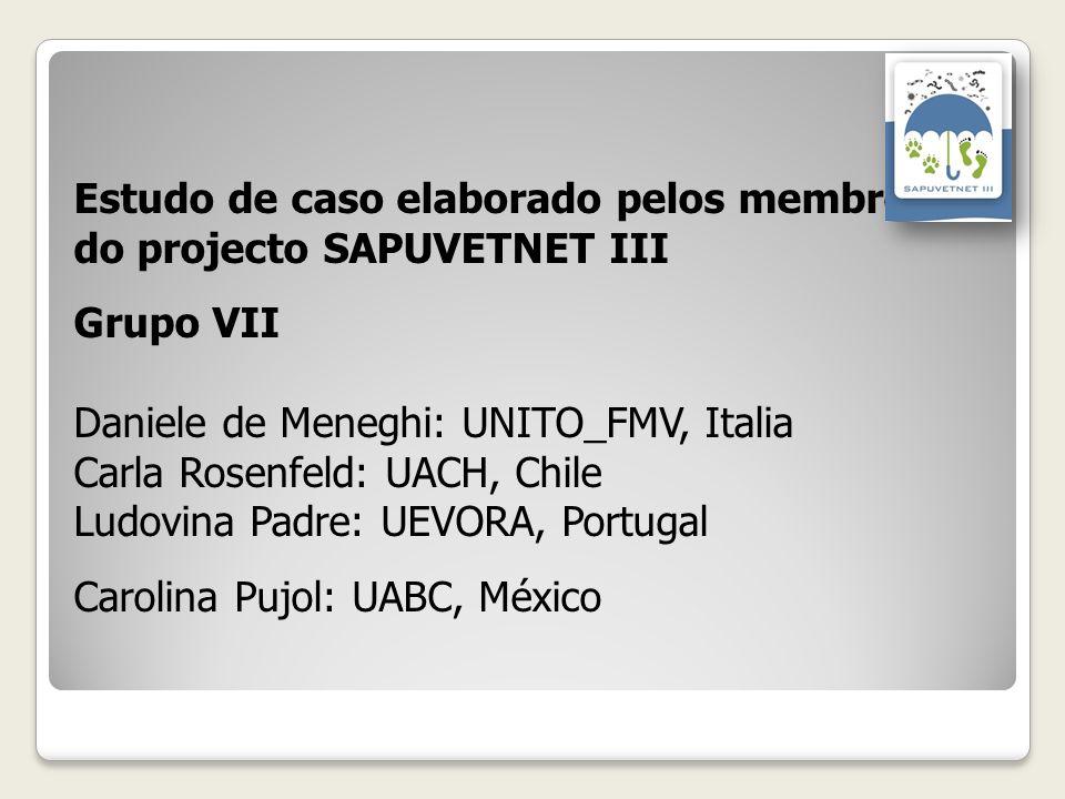 Estudo de caso elaborado pelos membroses do projecto SAPUVETNET III