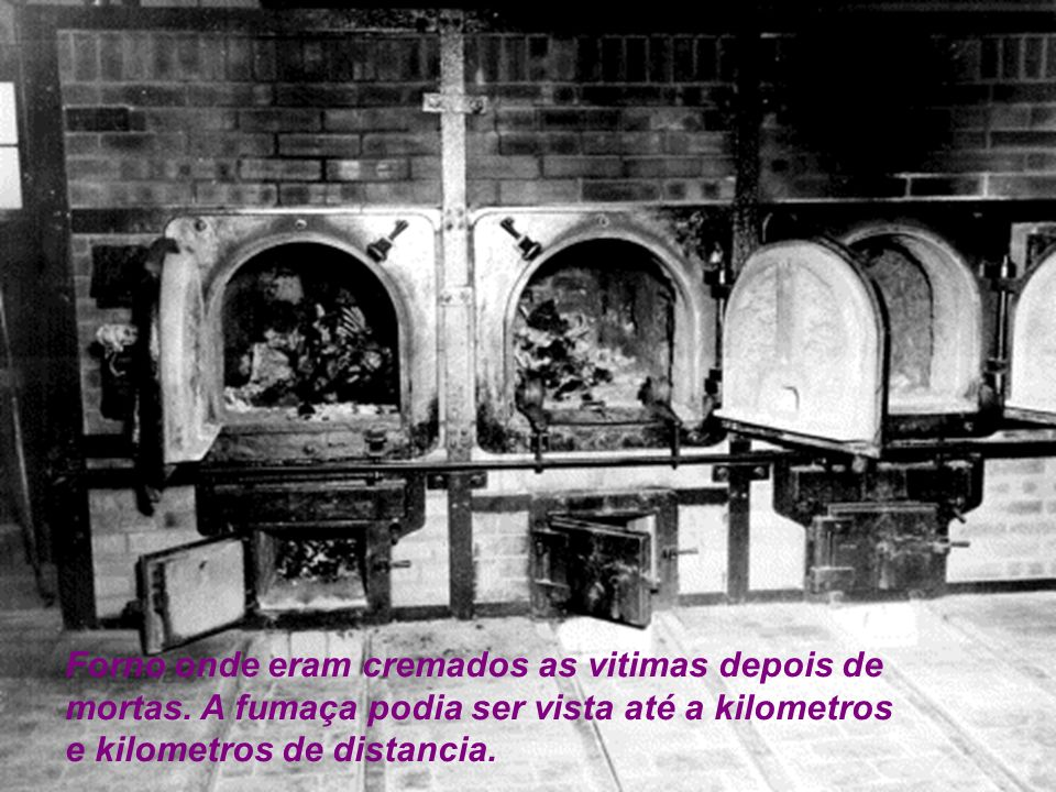 Forno onde eram cremados as vitimas depois de mortas