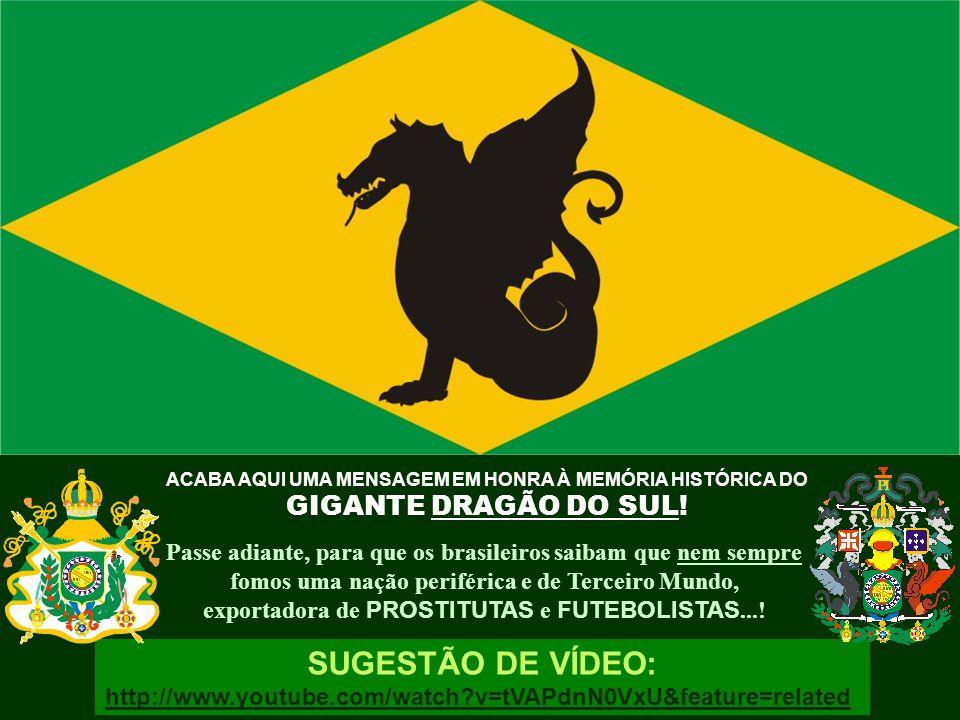 SUGESTÃO DE VÍDEO: GIGANTE DRAGÃO DO SUL!