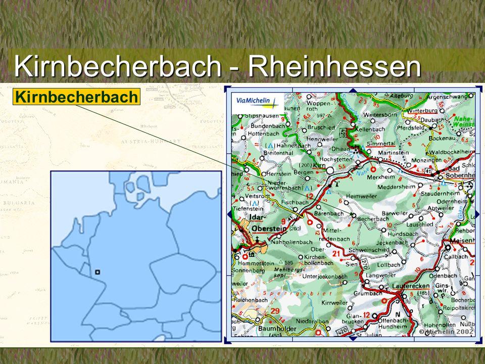 Kirnbecherbach - Rheinhessen