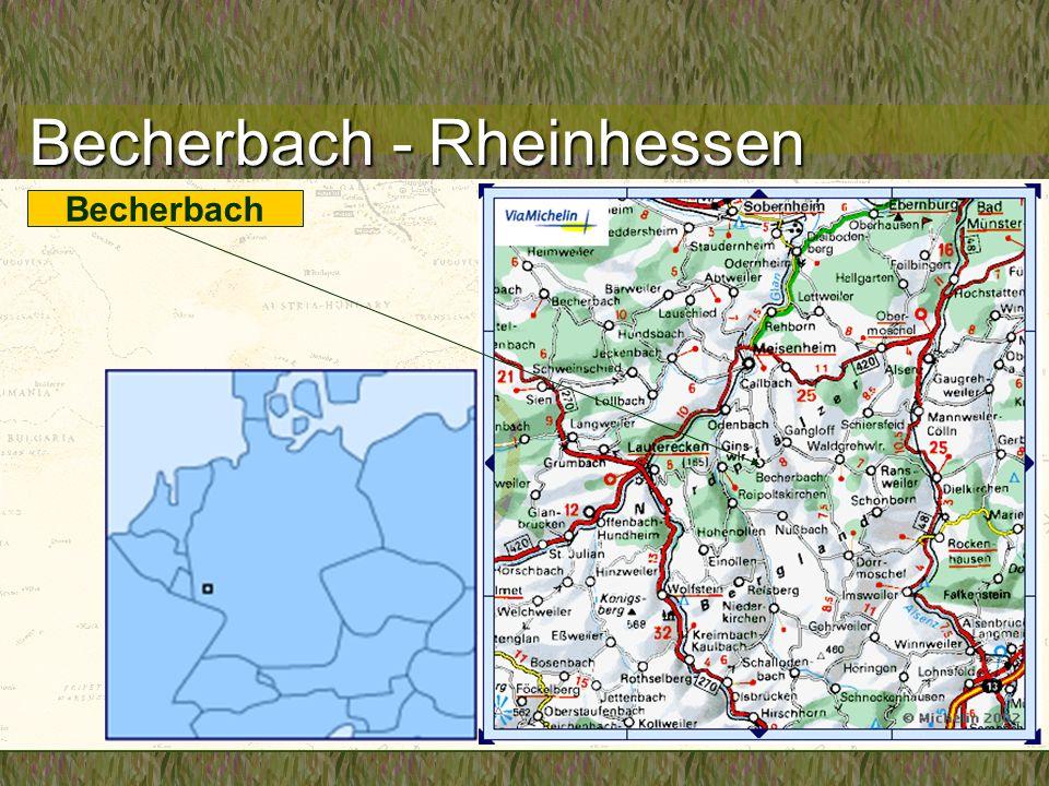 Becherbach - Rheinhessen