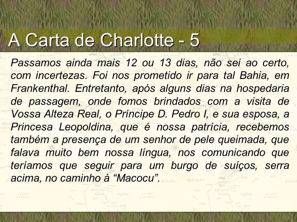 A Carta de Charlotte - 5