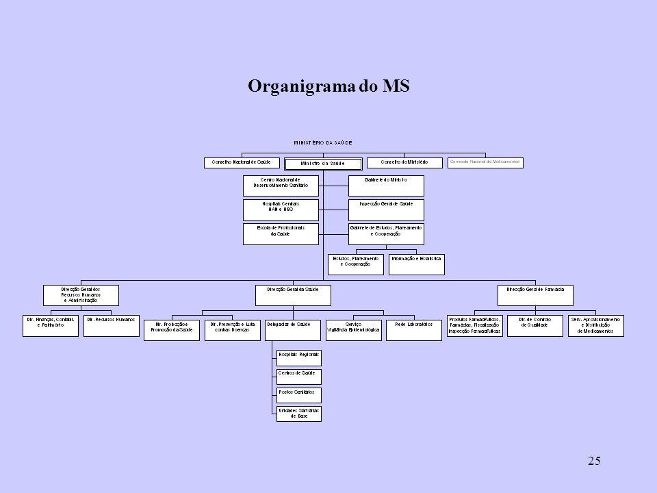 Organigrama do MS