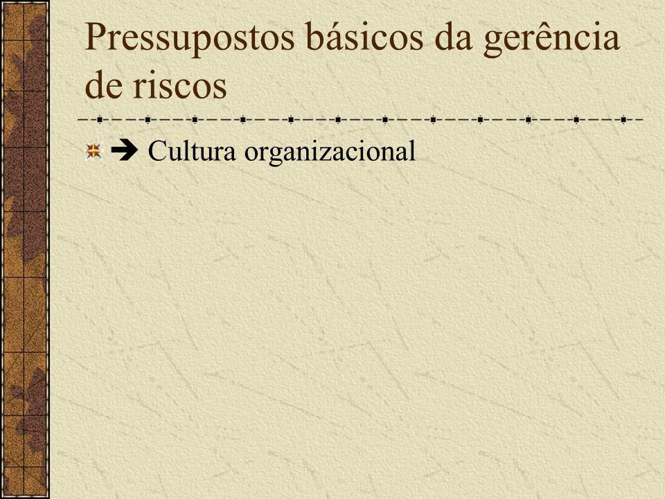 Pressupostos básicos da gerência de riscos