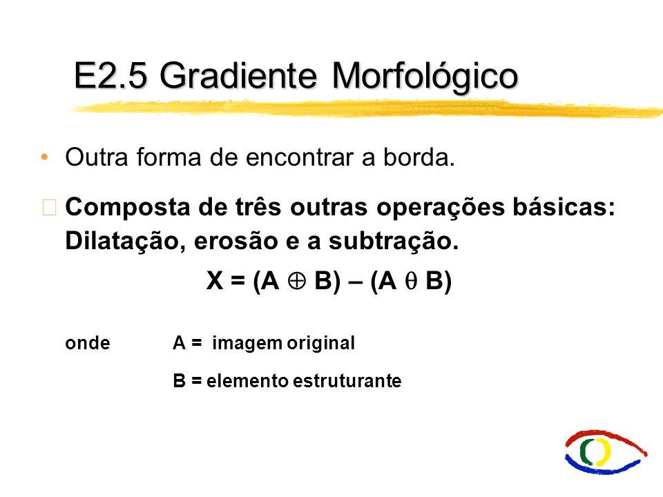 E2.5 Gradiente Morfológico