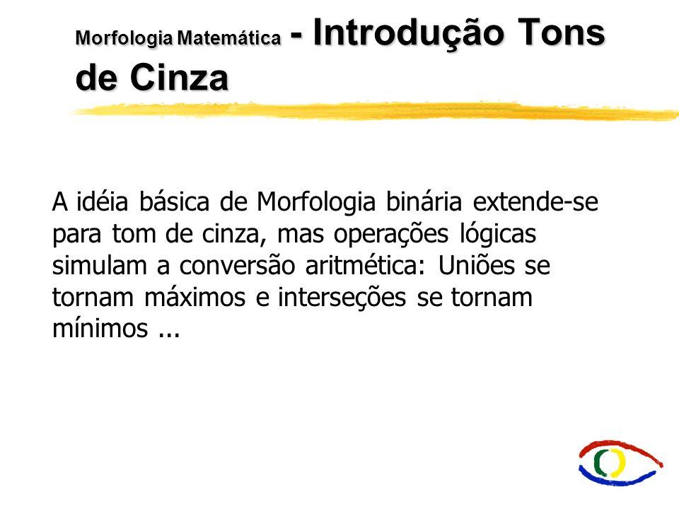 Morfologia Matemática - Introdução Tons de Cinza