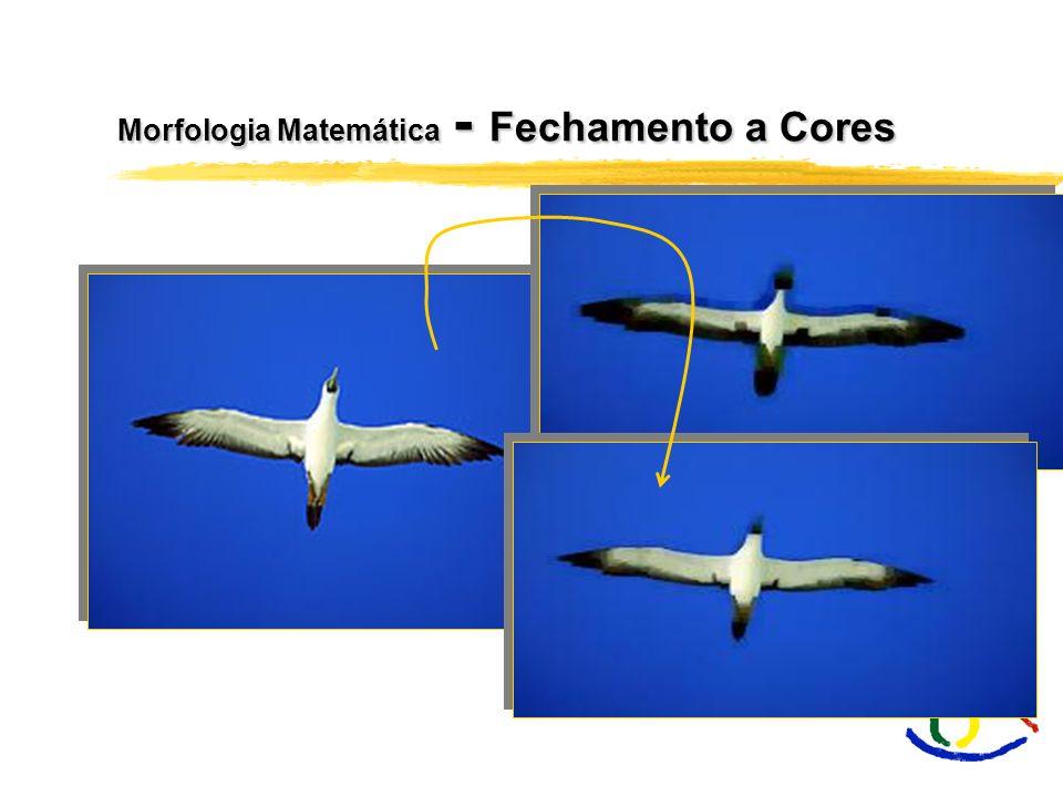 Morfologia Matemática - Fechamento a Cores