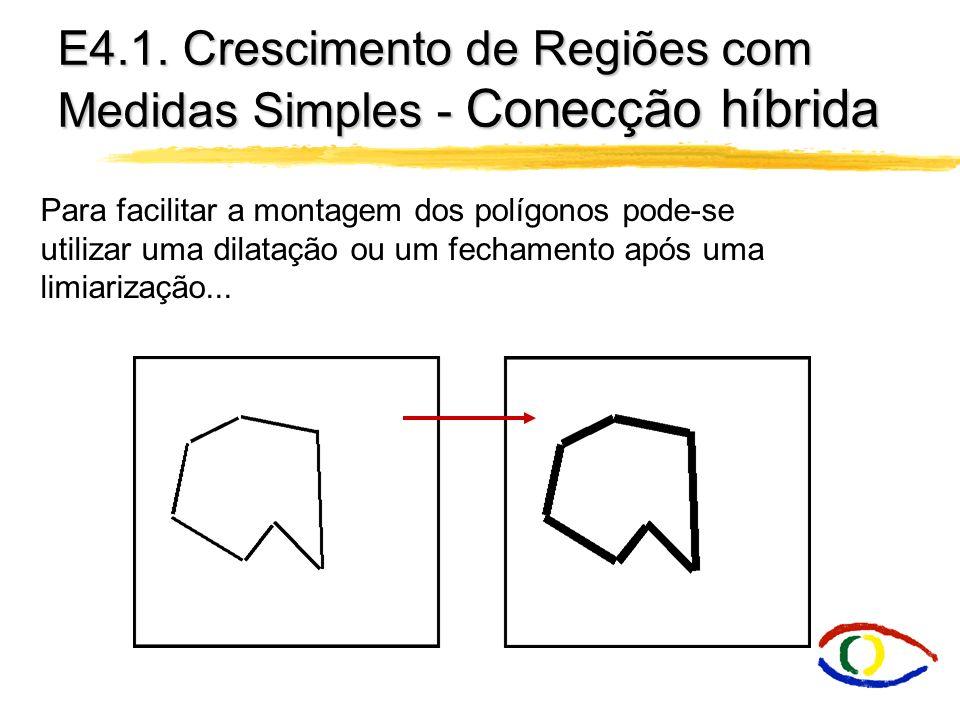 E4.1. Crescimento de Regiões com Medidas Simples - Conecção híbrida