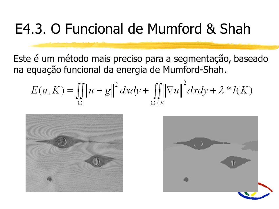 E4.3. O Funcional de Mumford & Shah