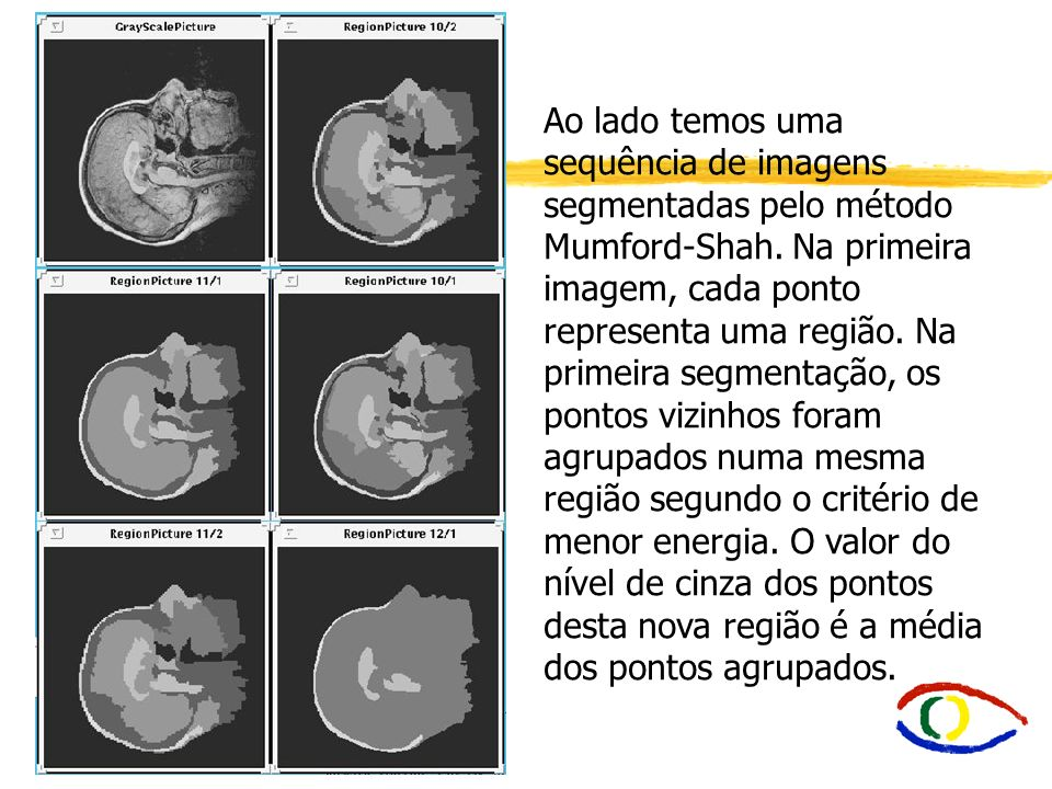 Ao lado temos uma sequência de imagens segmentadas pelo método Mumford-Shah.
