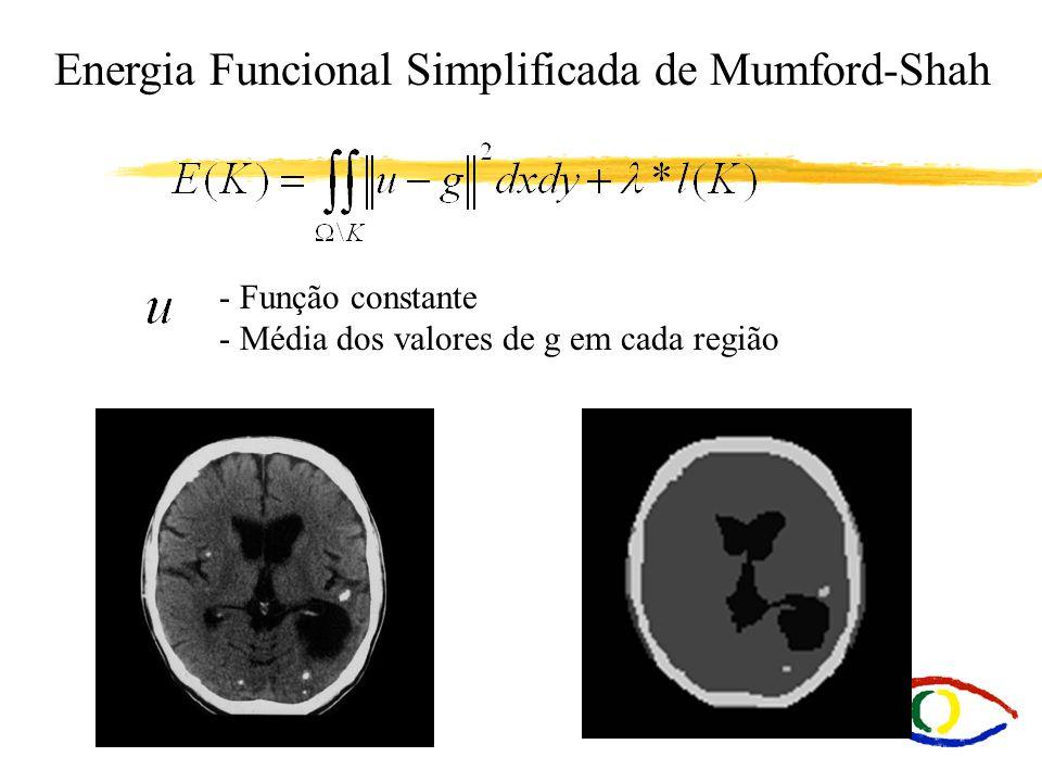 Energia Funcional Simplificada de Mumford-Shah