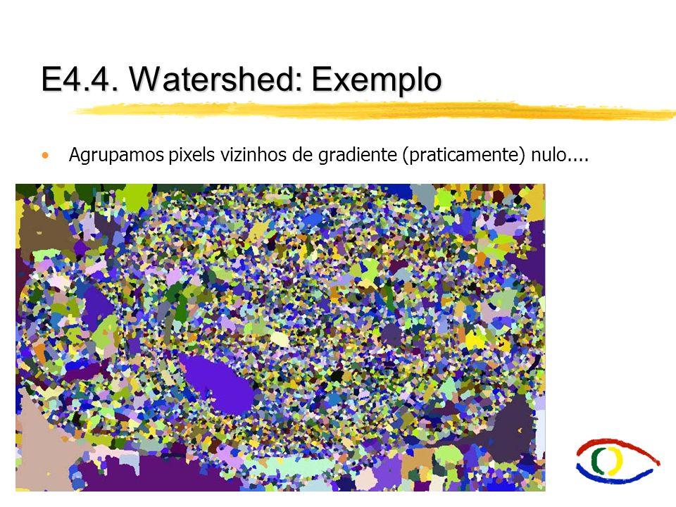 E4.4. Watershed: Exemplo Agrupamos pixels vizinhos de gradiente (praticamente) nulo....
