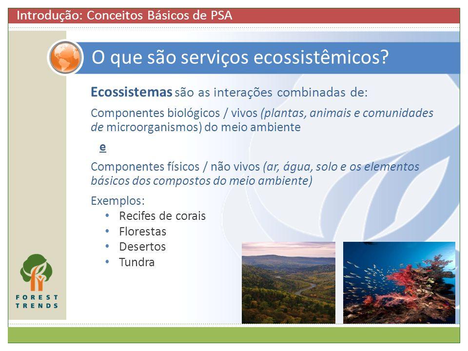 O que são serviços ecossistêmicos
