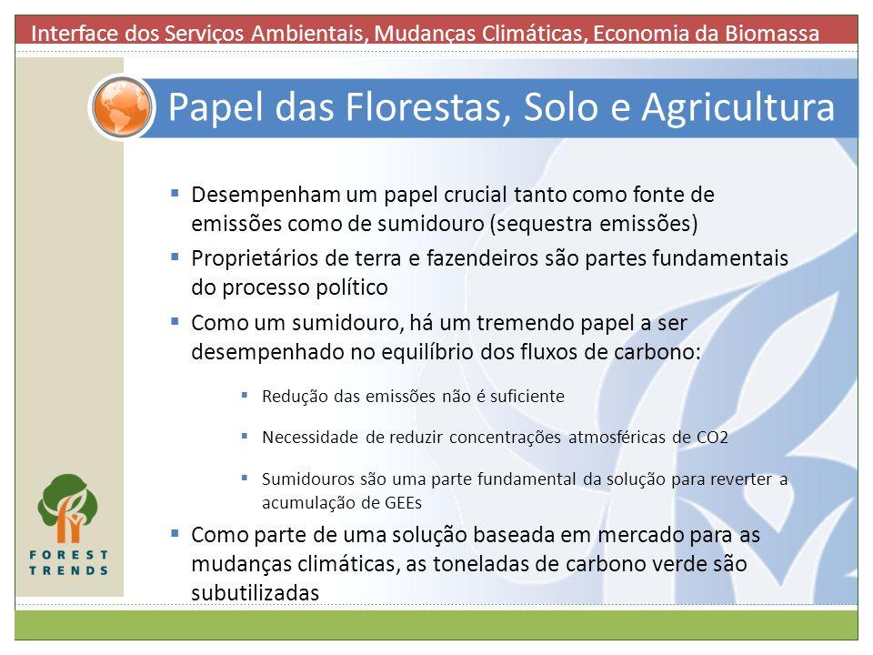 Papel das Florestas, Solo e Agricultura