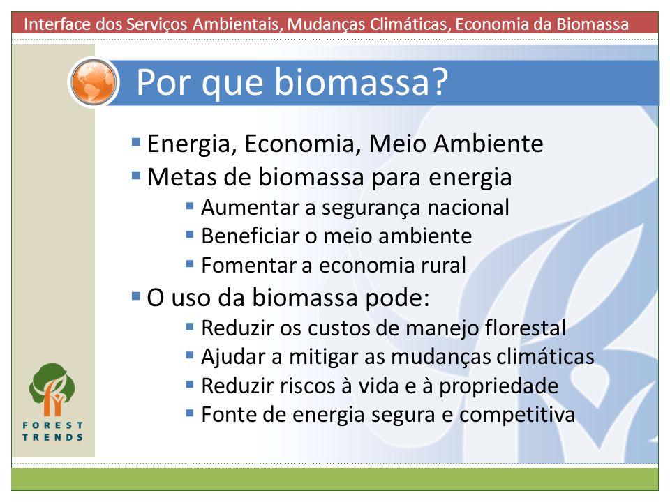 Por que biomassa Energia, Economia, Meio Ambiente