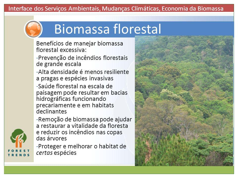 Interface dos Serviços Ambientais, Mudanças Climáticas, Economia da Biomassa