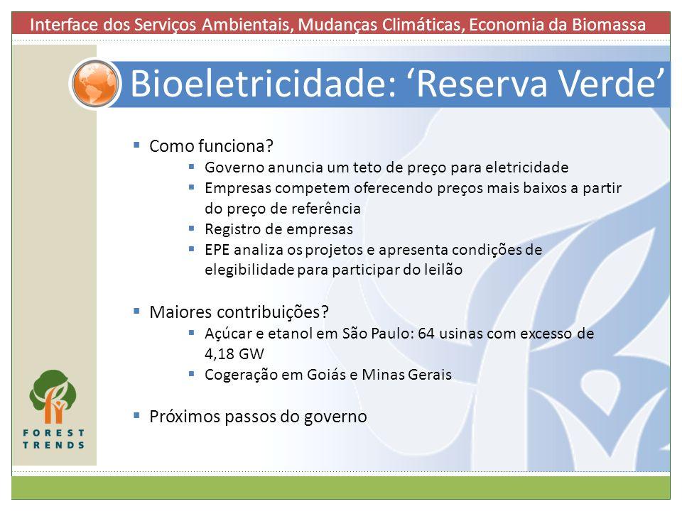 Bioeletricidade: 'Reserva Verde'