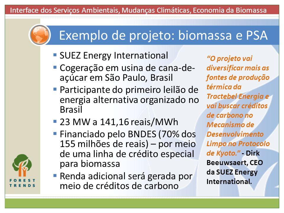 Exemplo de projeto: biomassa e PSA