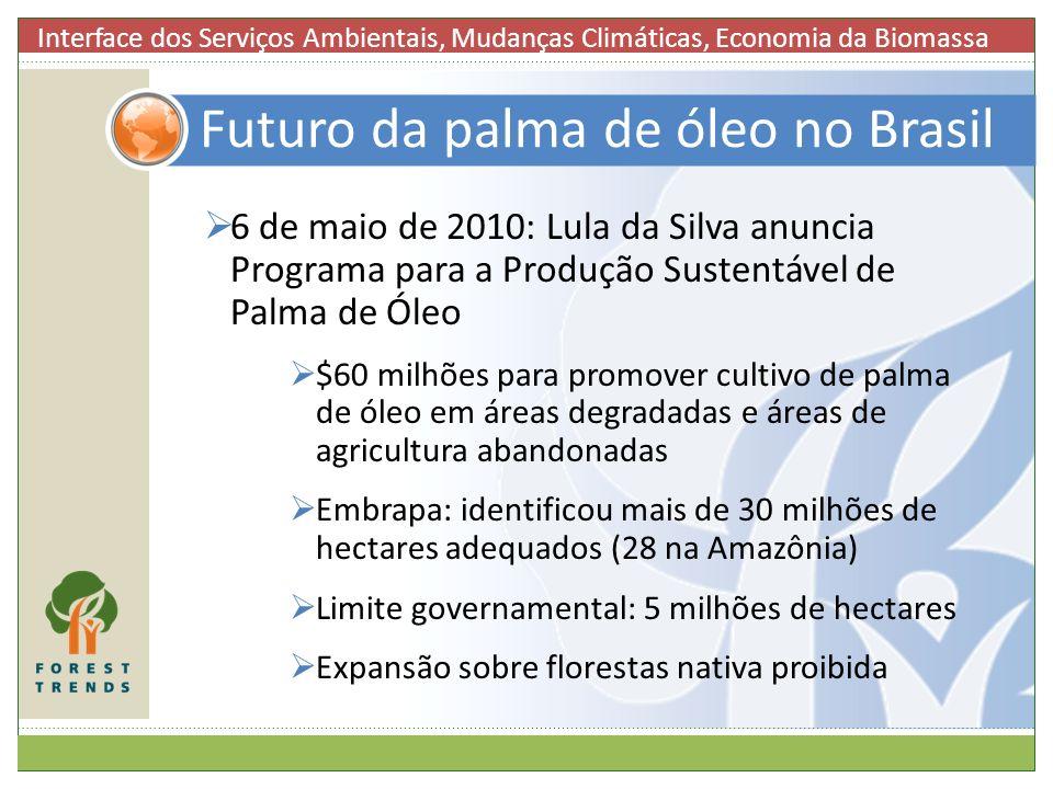 Futuro da palma de óleo no Brasil