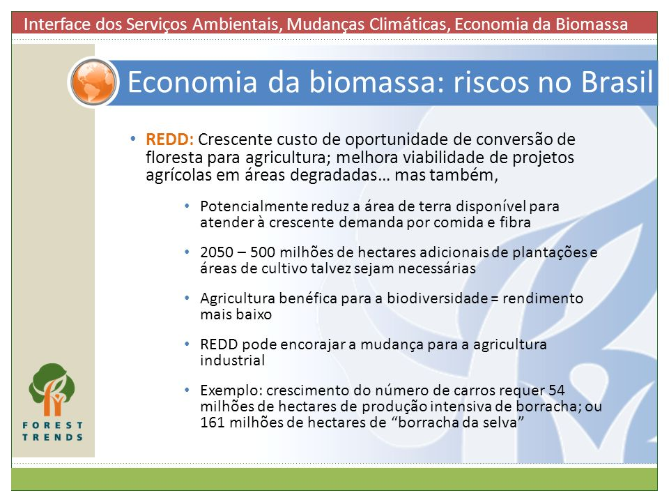 Economia da biomassa: riscos no Brasil