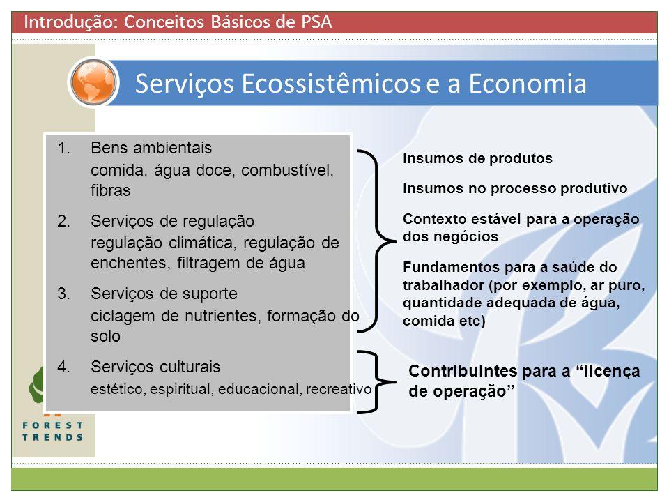 Serviços Ecossistêmicos e a Economia