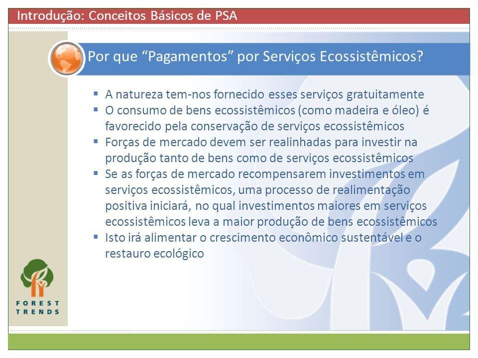 Por que Pagamentos por Serviços Ecossistêmicos