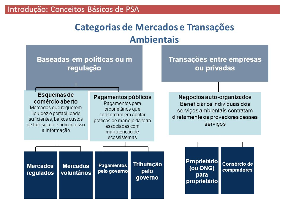 Categorias de Mercados e Transações Ambientais