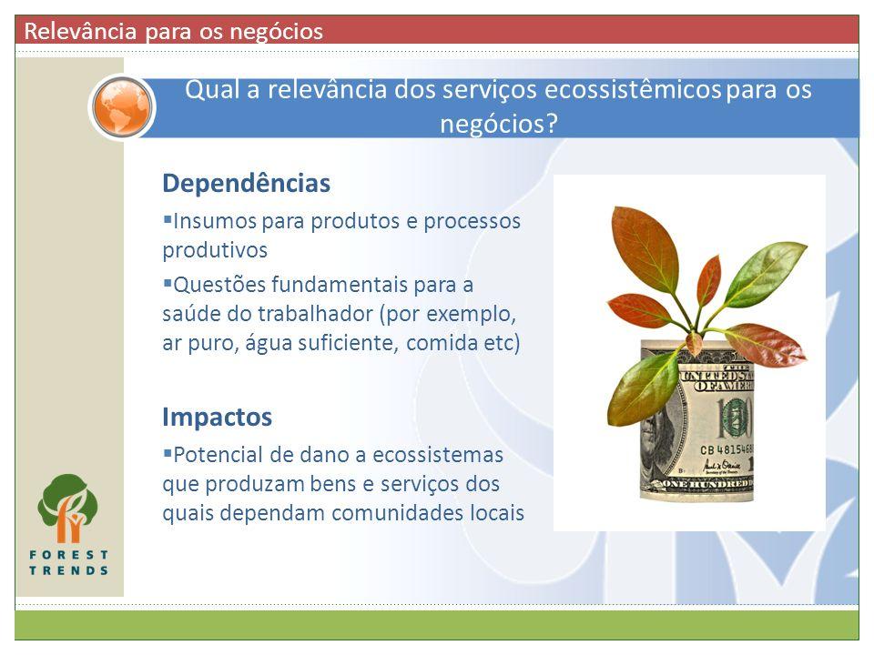 Qual a relevância dos serviços ecossistêmicos para os negócios