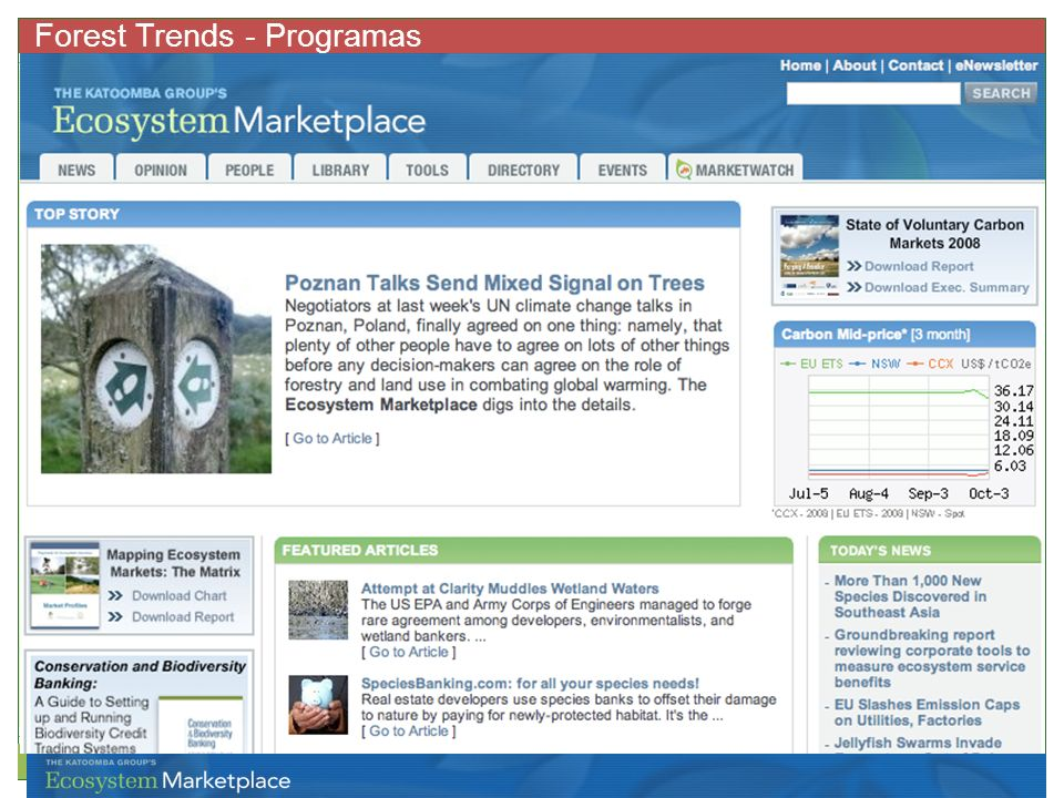 Forest Trends - Programas