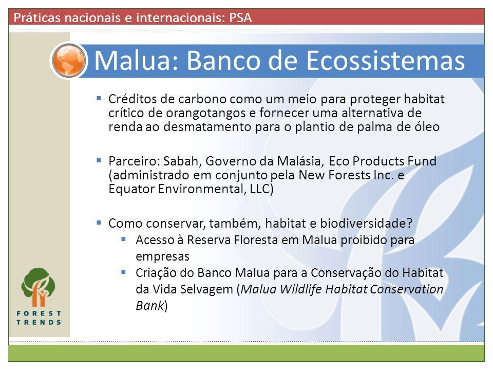 Malua: Banco de Ecossistemas