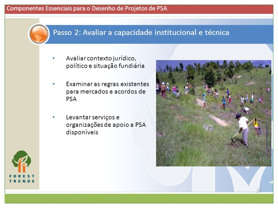 Introdução ao conceito e prática de PSA Relevância para os ...