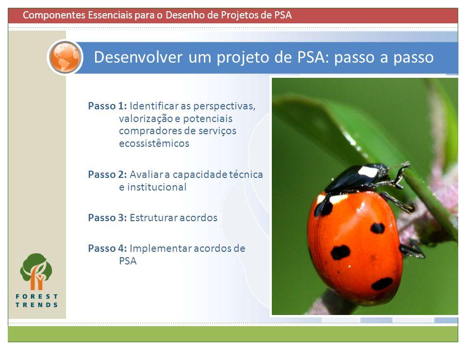 Desenvolver um projeto de PSA: passo a passo