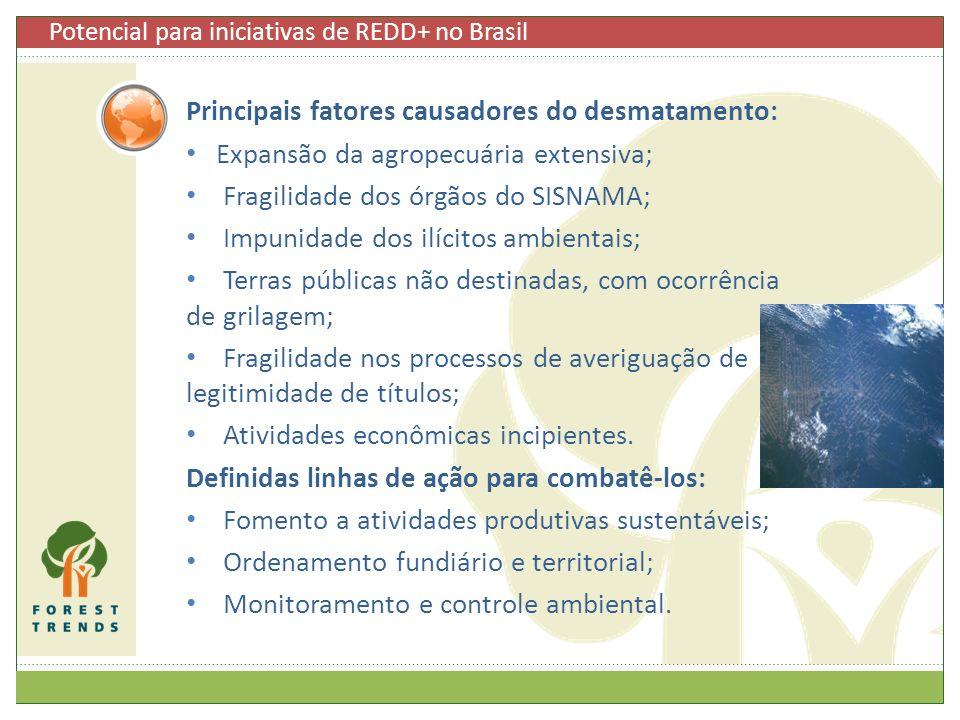 Potencial para iniciativas de REDD+ no Brasil