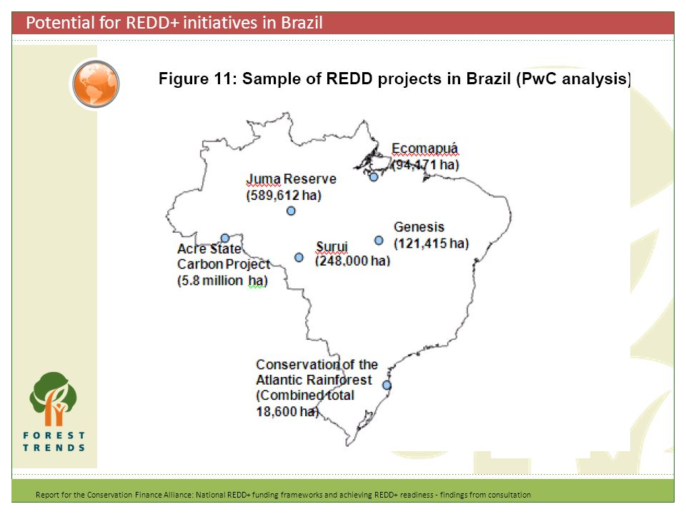 Potential for REDD+ initiatives in Brazil