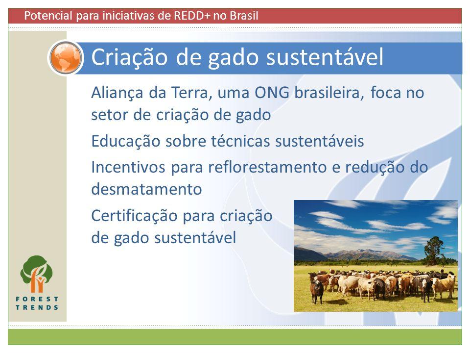 Criação de gado sustentável