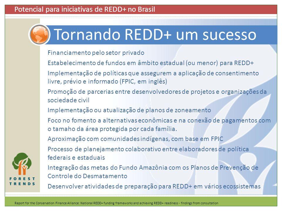 Tornando REDD+ um sucesso