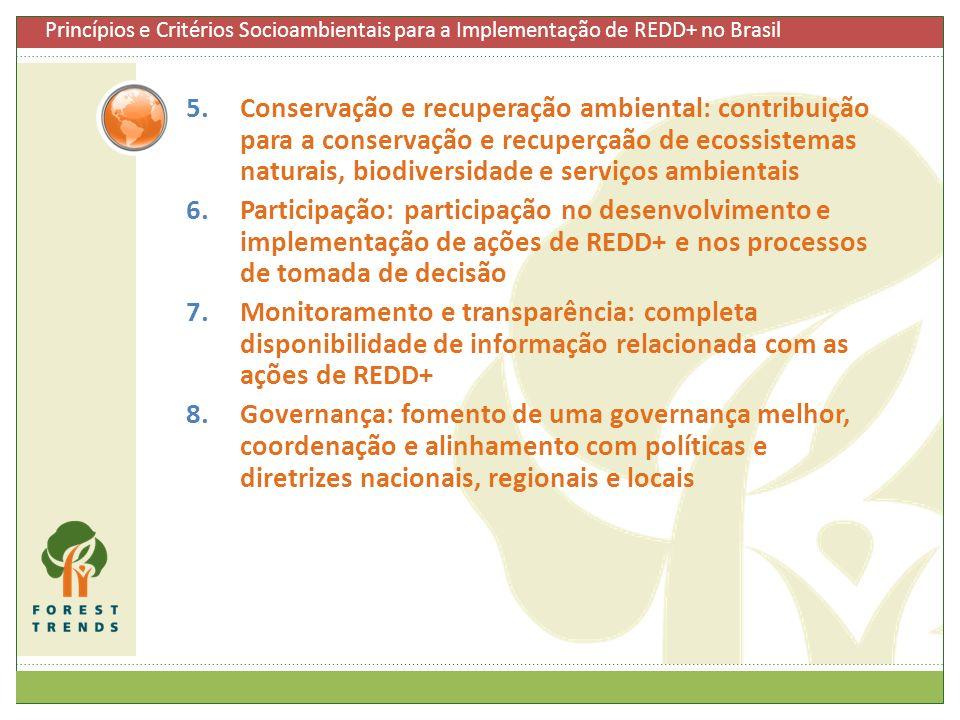 Princípios e Critérios Socioambientais para a Implementação de REDD+ no Brasil