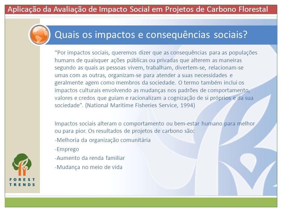 Quais os impactos e consequências sociais