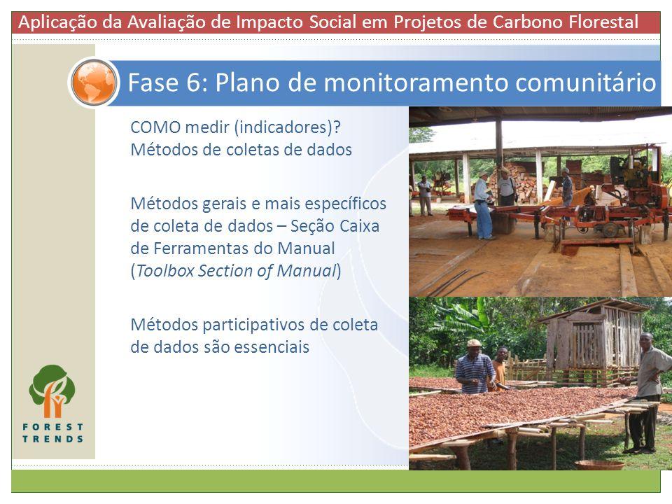 Fase 6: Plano de monitoramento comunitário