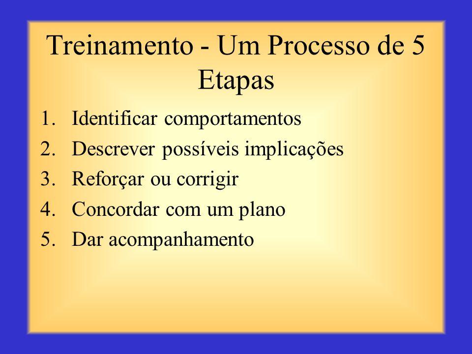 Treinamento - Um Processo de 5 Etapas